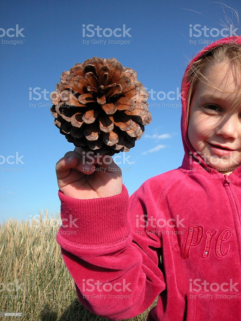 Child holding up a  pinecone royalty-free stock photo