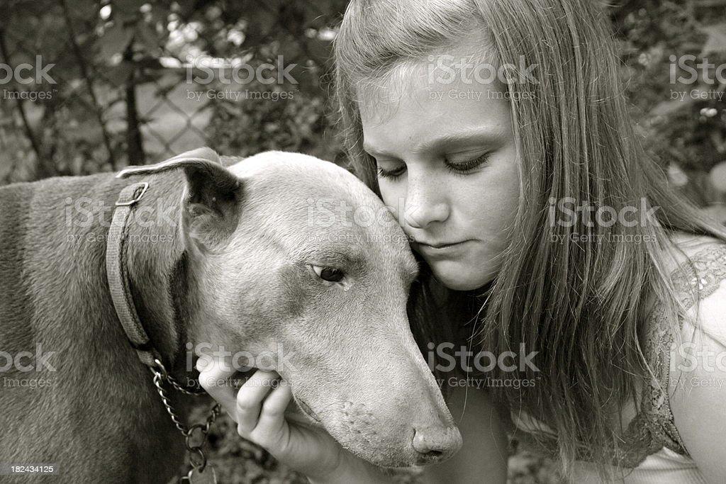 Child Hugging Dog royalty-free stock photo