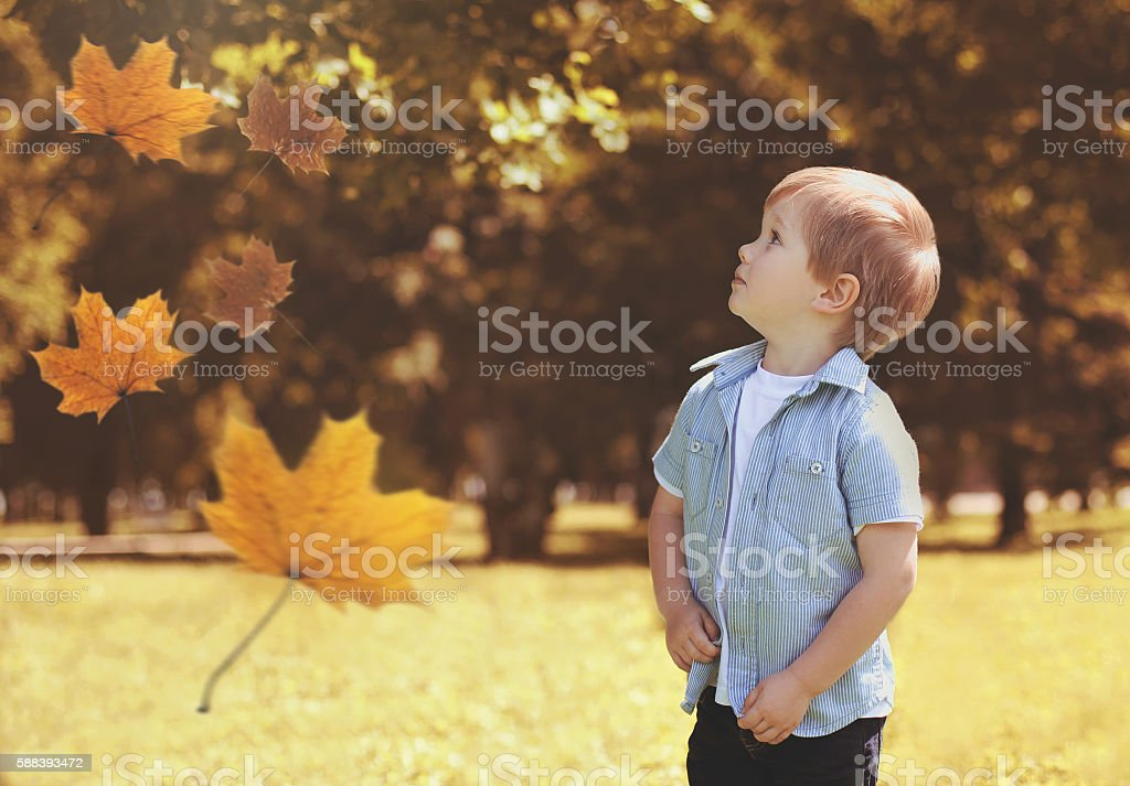 child in autumn park looking up on flying maple leaves stock photo