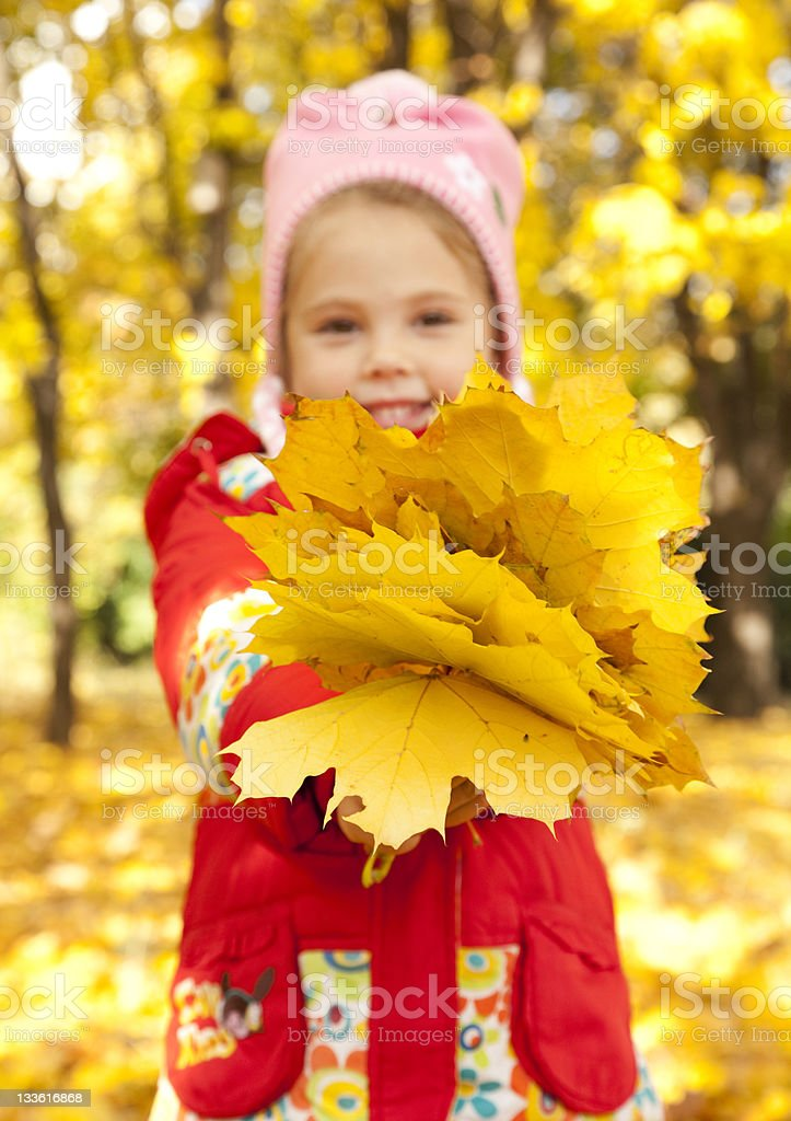 Child in autumn park. royalty-free stock photo