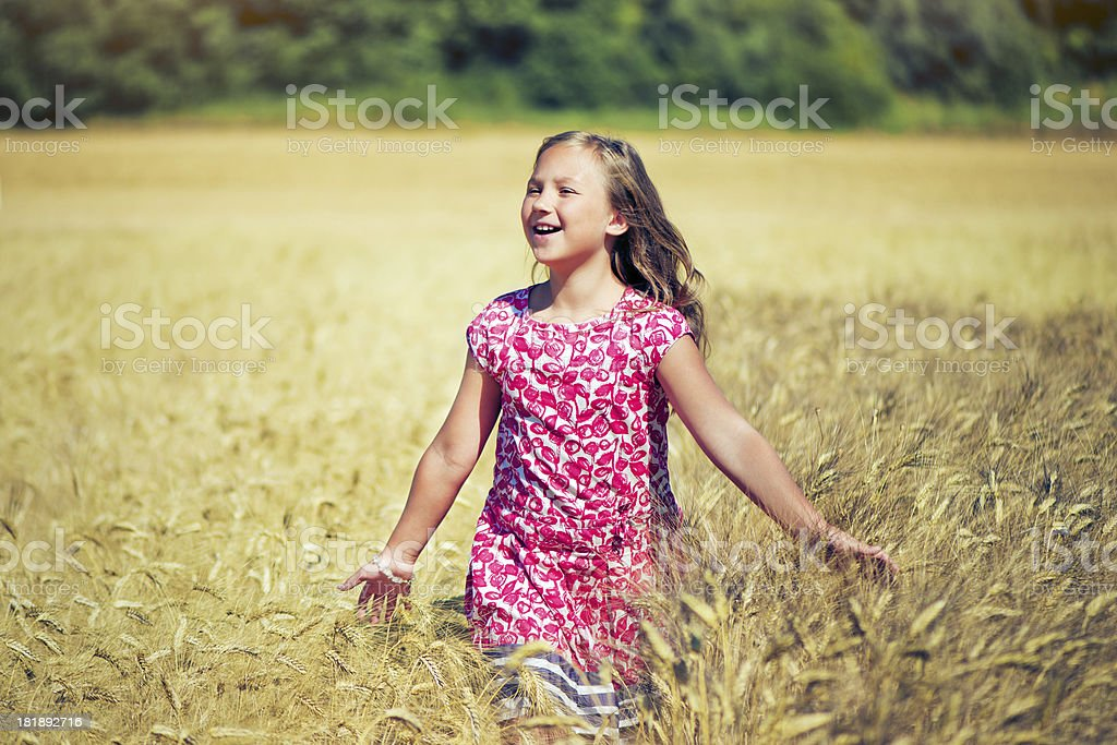 Child in the wheat field royalty-free stock photo