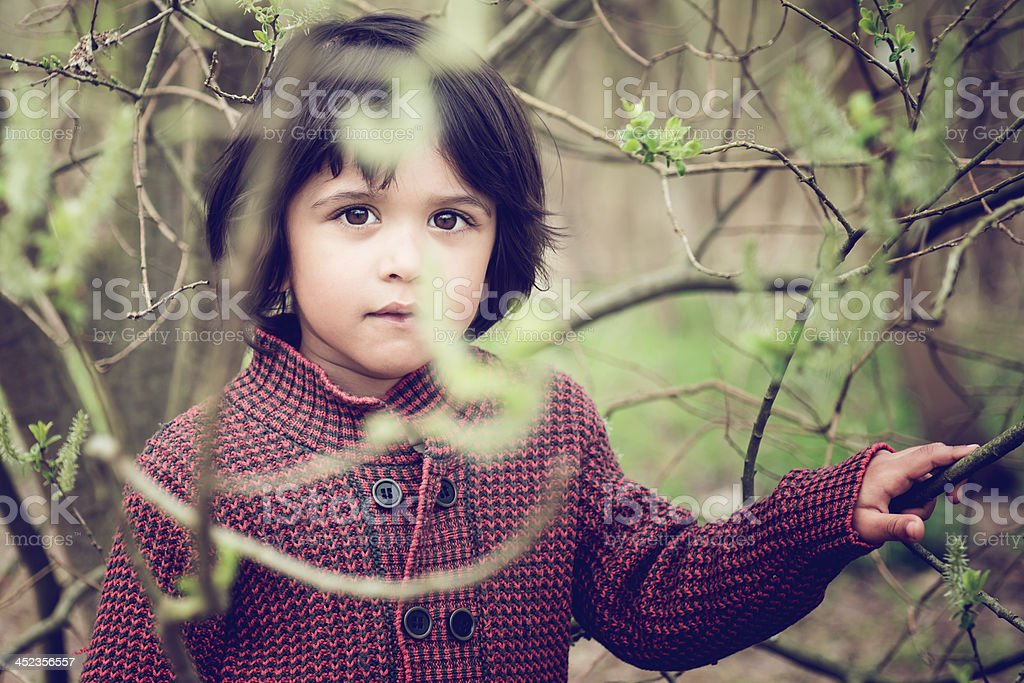 Child in tree royalty-free stock photo
