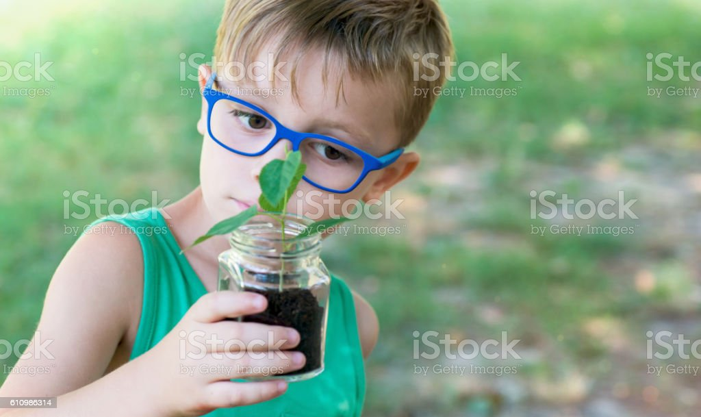 Child Looking Plant in to a Jar stock photo
