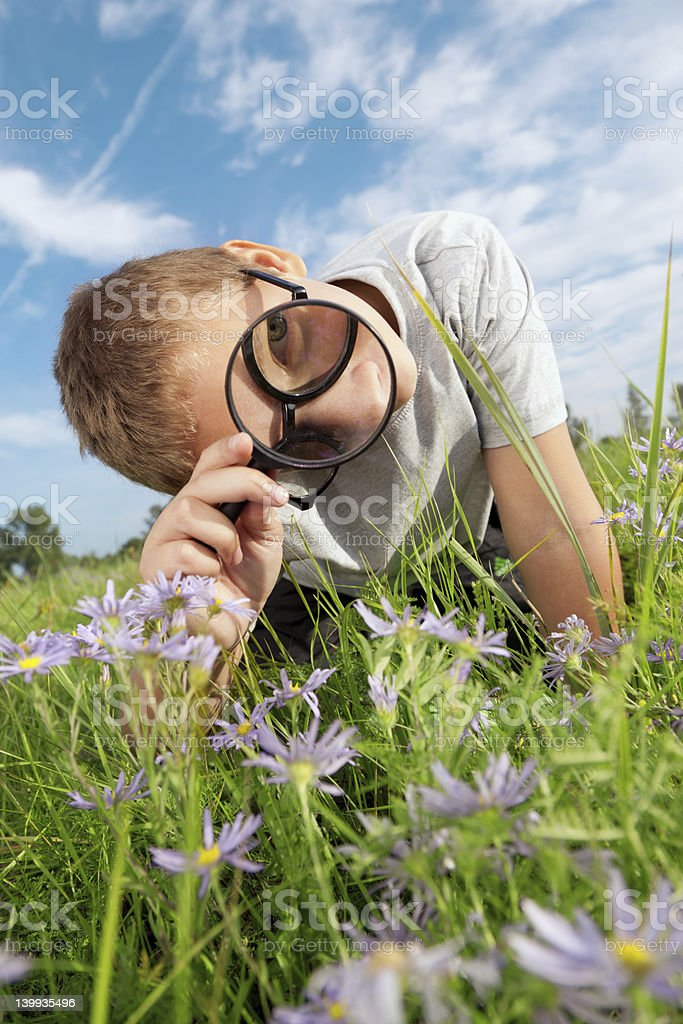 Child observing flowers with a magnifying glass royalty-free stock photo