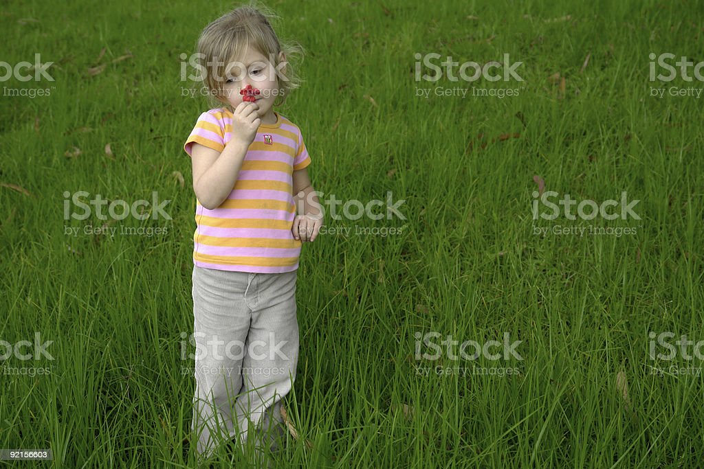 child on the grass royalty-free stock photo