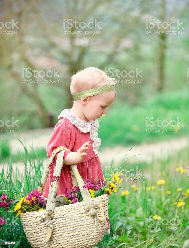 Child picking up flower stock photo