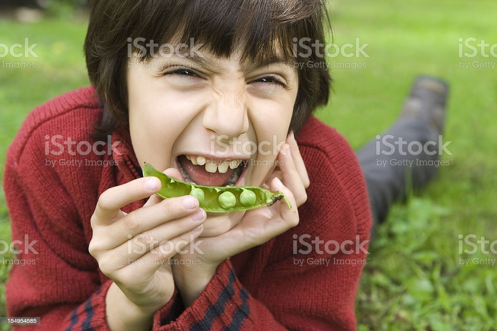 Child Portrait with a Peas Pod near Mouth stock photo