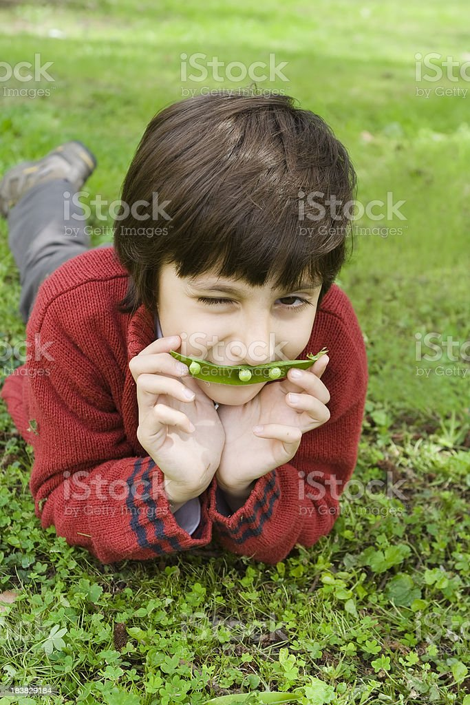 Child Portrait with a Peas Pod stock photo
