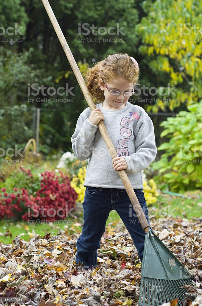 child rakes up a pile of Fall leaves royalty-free stock photo