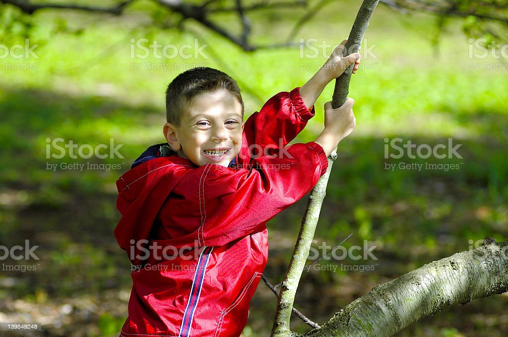Child Sitting on a Tree royalty-free stock photo