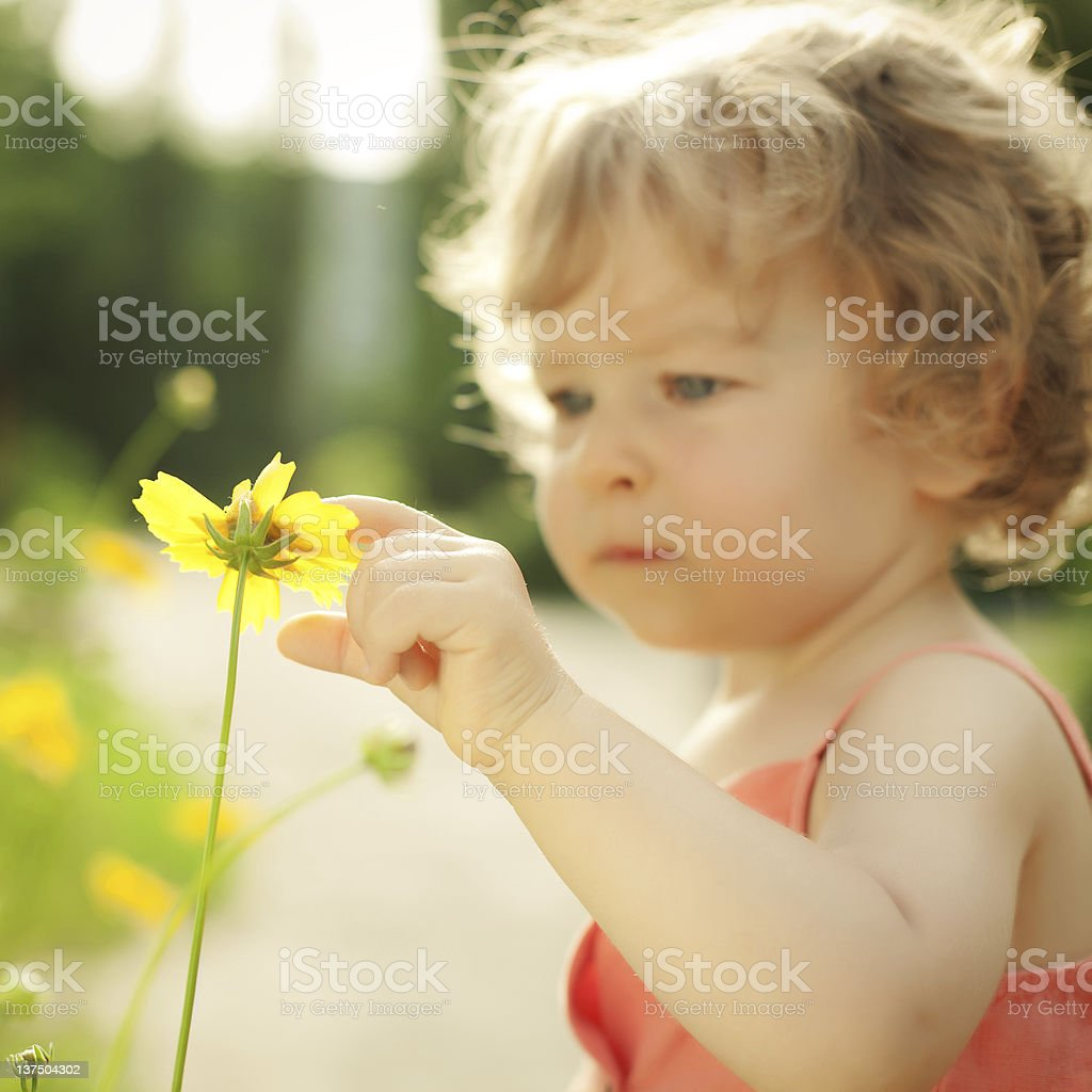 Child touching spring flower royalty-free stock photo