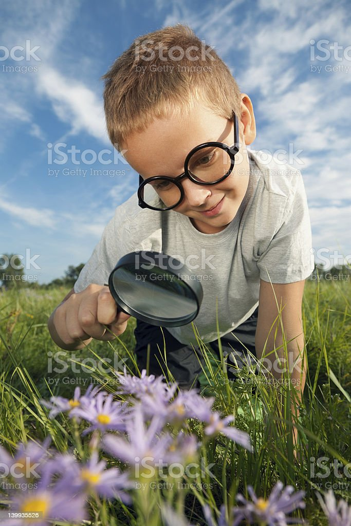 Child using a magnifying glass to look at flowers royalty-free stock photo