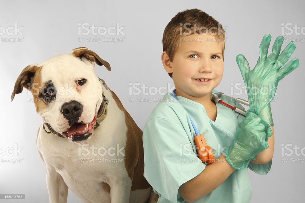 Child Vet with Rubber Glove. stock photo