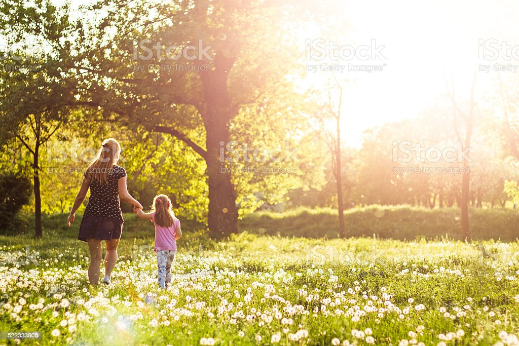Child walking in meadow with mother at sunset stock photo
