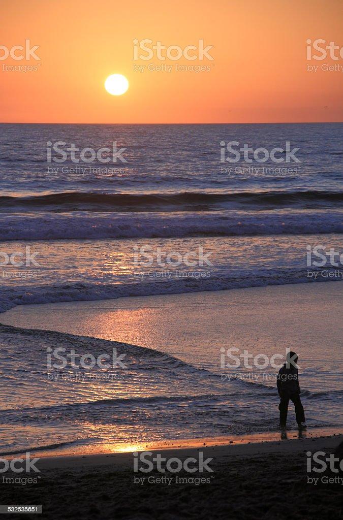 Child Walks on Santa Monica Beach at Sunset stock photo