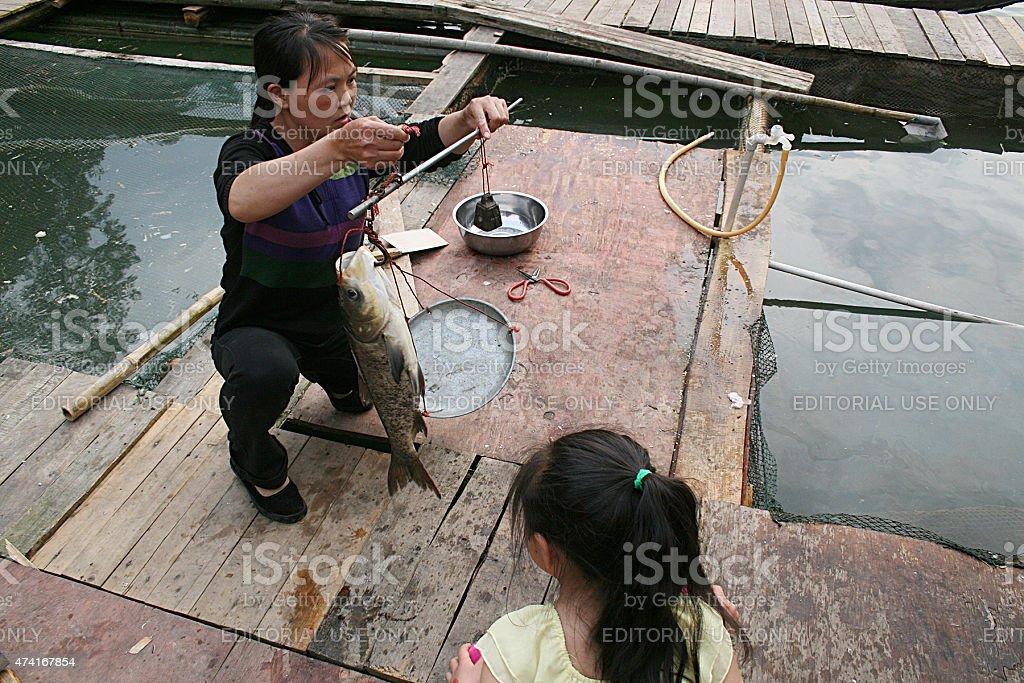 Bambino guardando la donna di peso con pesce, Ganzhou foto stock royalty-free