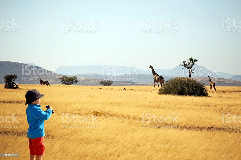 Child with binoculars watching animals on safari in Africa stock photo