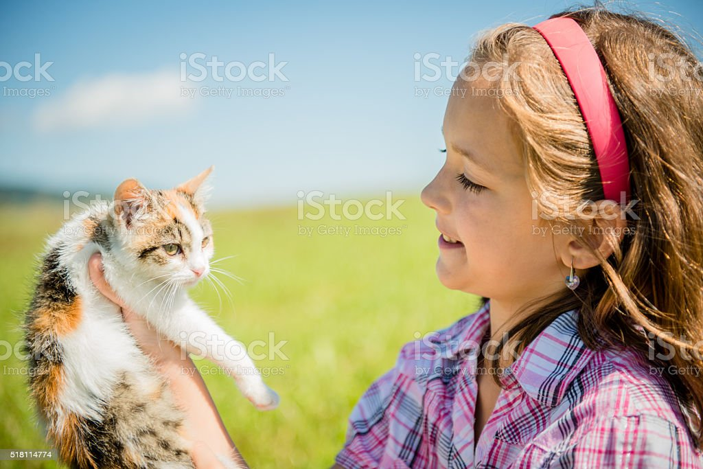 Child with cat stock photo