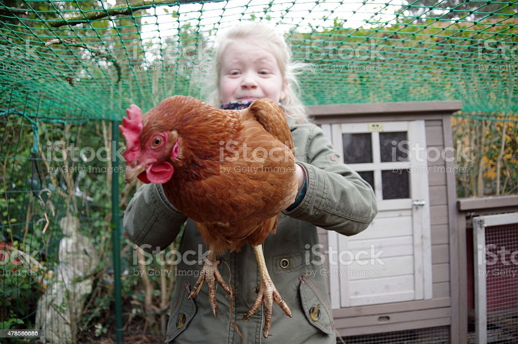 Child with Chicken stock photo