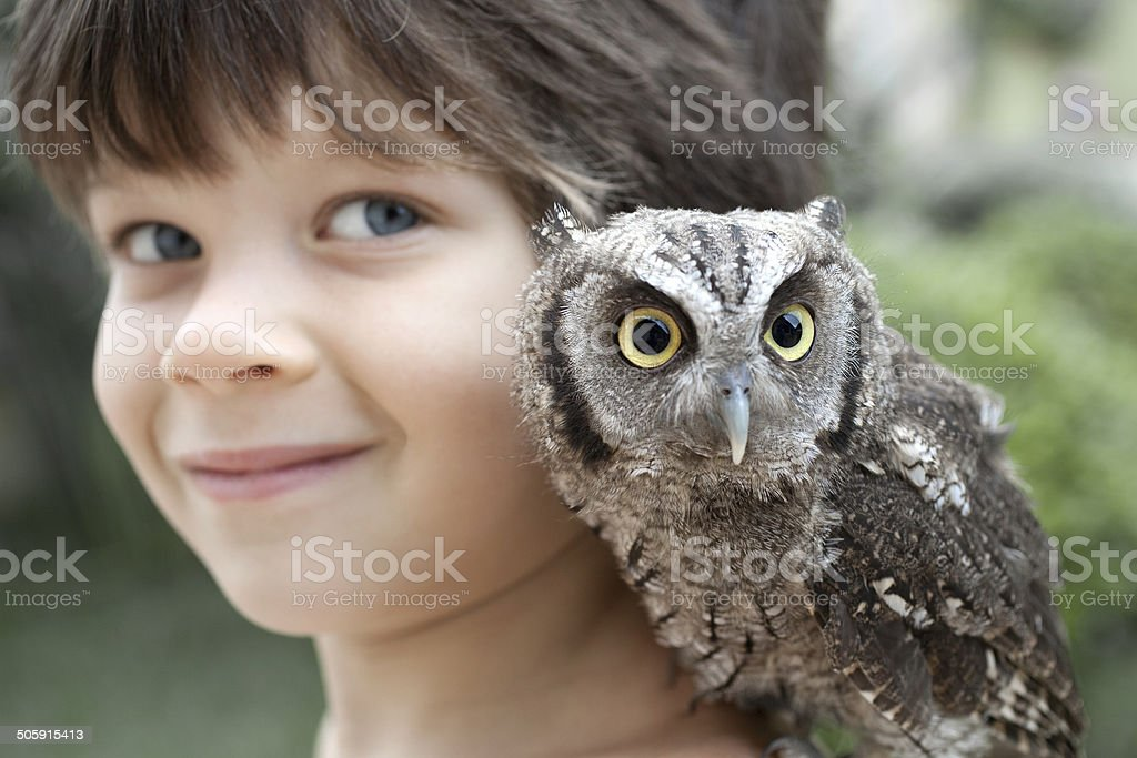 Child with owl stock photo