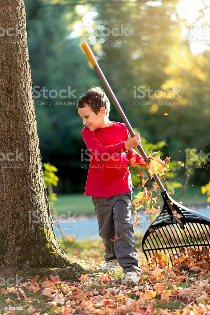 Child with special needs raking leaves in the front yard stock photo