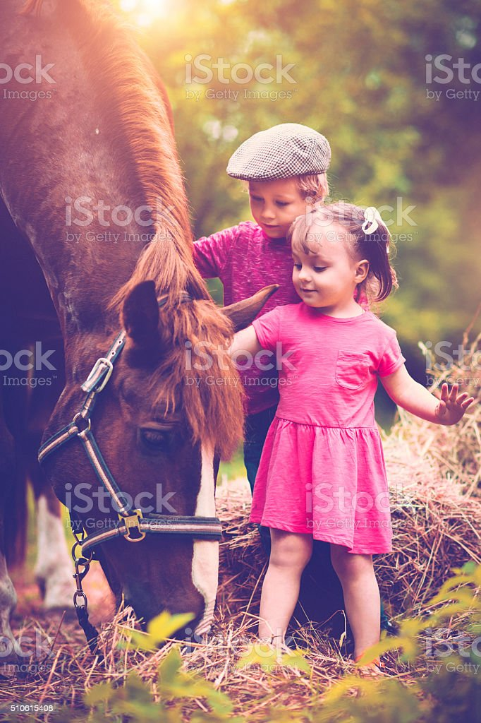 Children and a horse stock photo