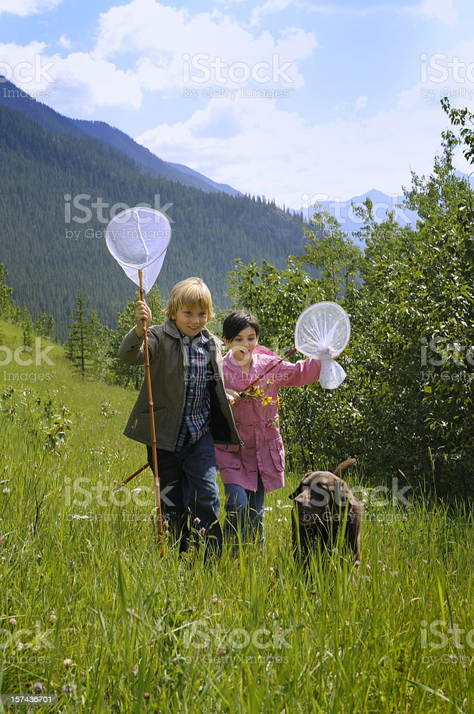 Children and dog playing outdoors royalty-free stock photo