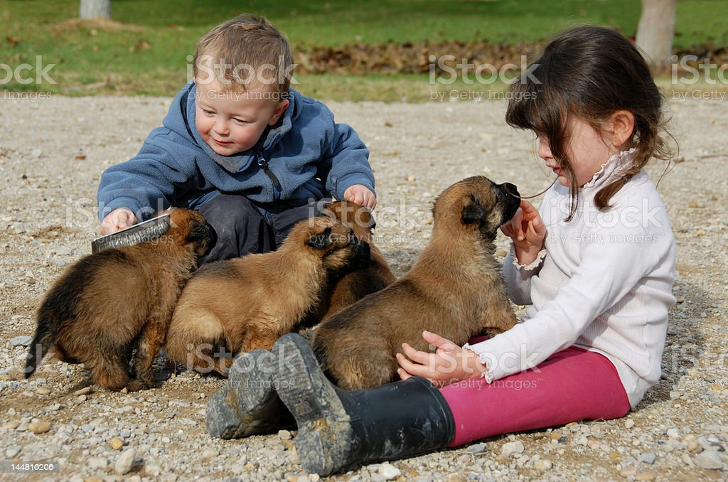 children and puppies royalty-free stock photo