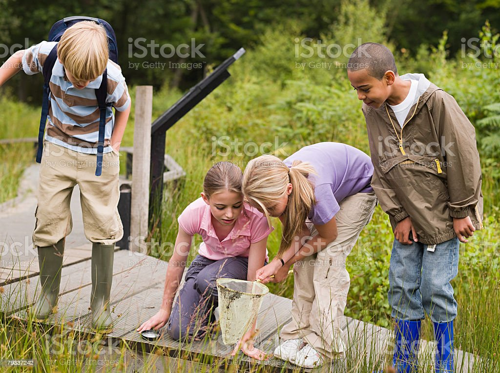 Children at nature reserve royalty-free stock photo