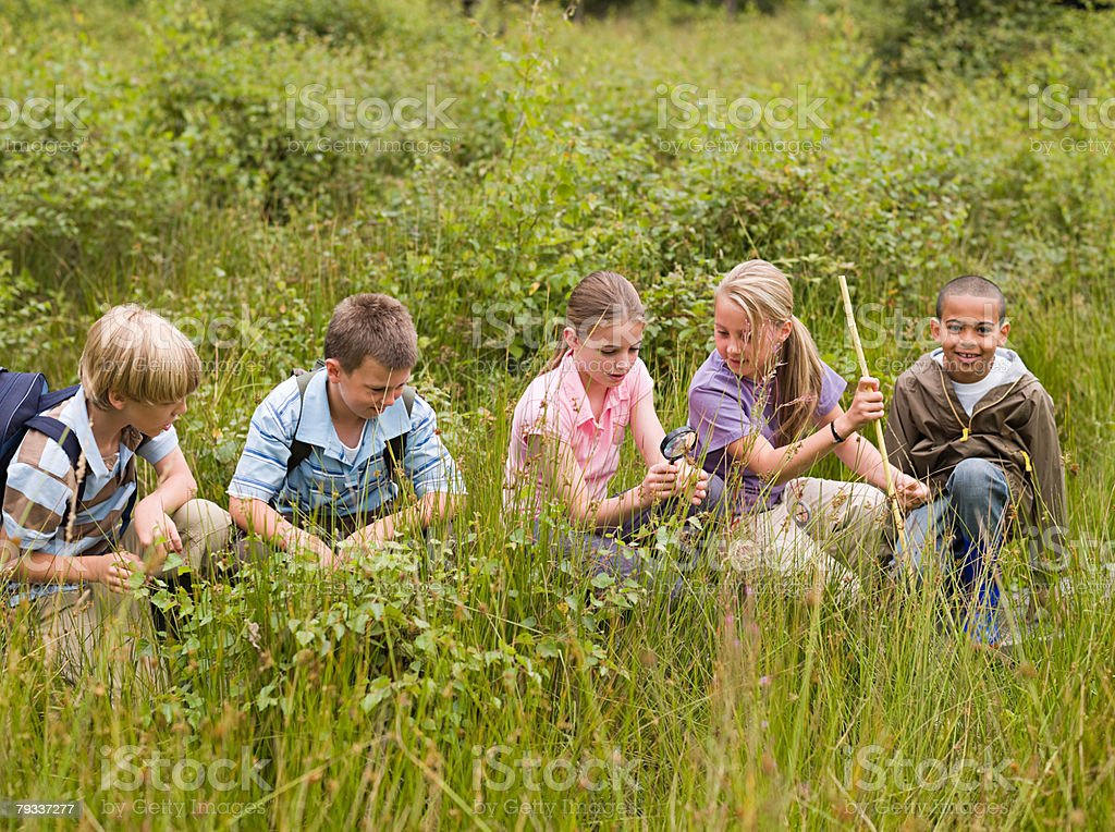 Children at nature reserve stock photo