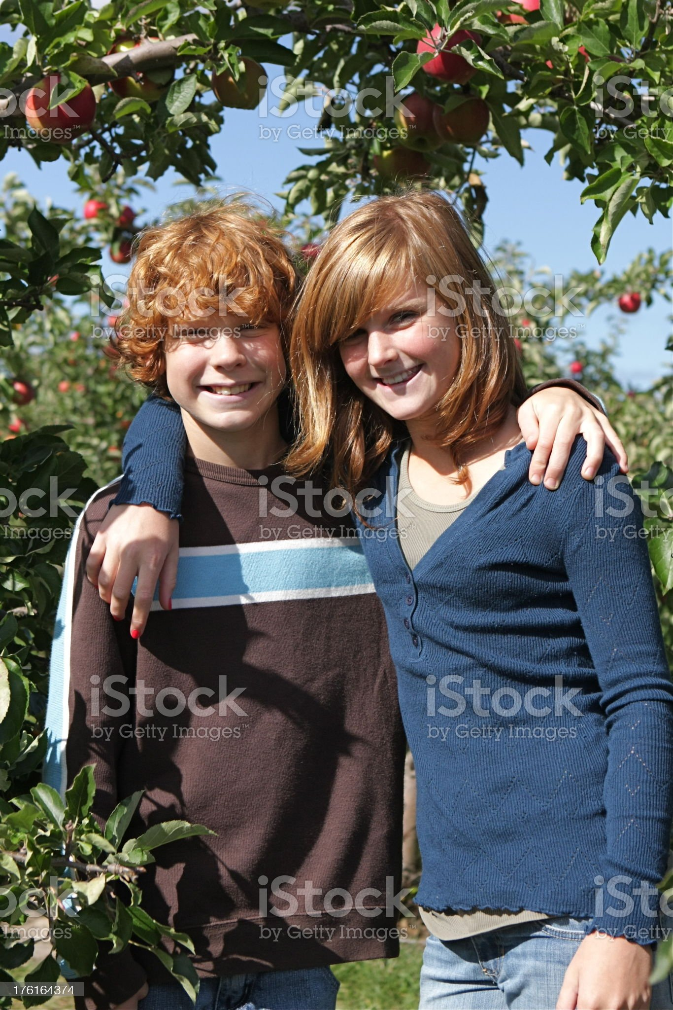 Children at the Apple Orchard royalty-free stock photo