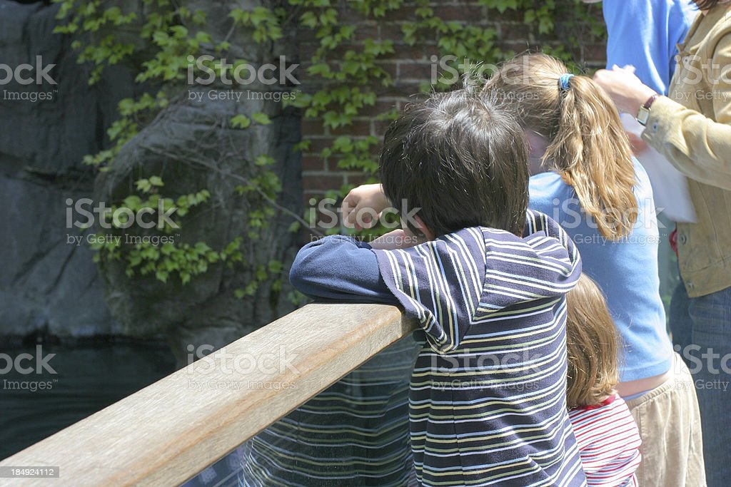 Children at the Zoo royalty-free stock photo