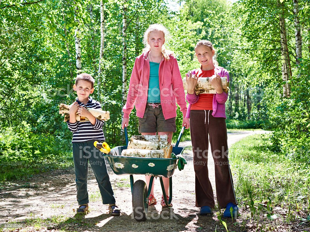 Children carry firewood from forest stock photo