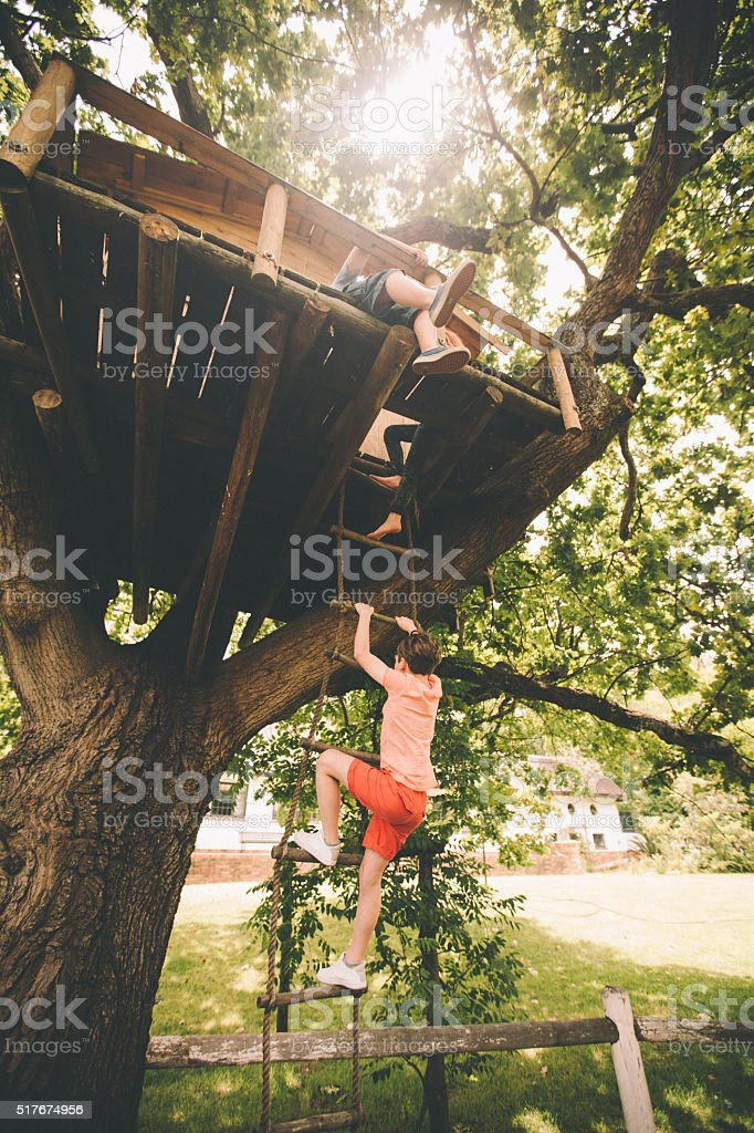 Children climbing up a rope ladder to their treehouse stock photo