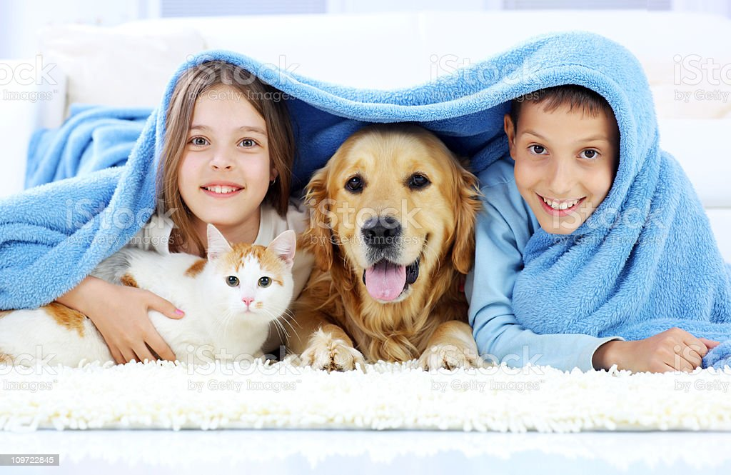 Children, dog and cat looking out the blanket. royalty-free stock photo