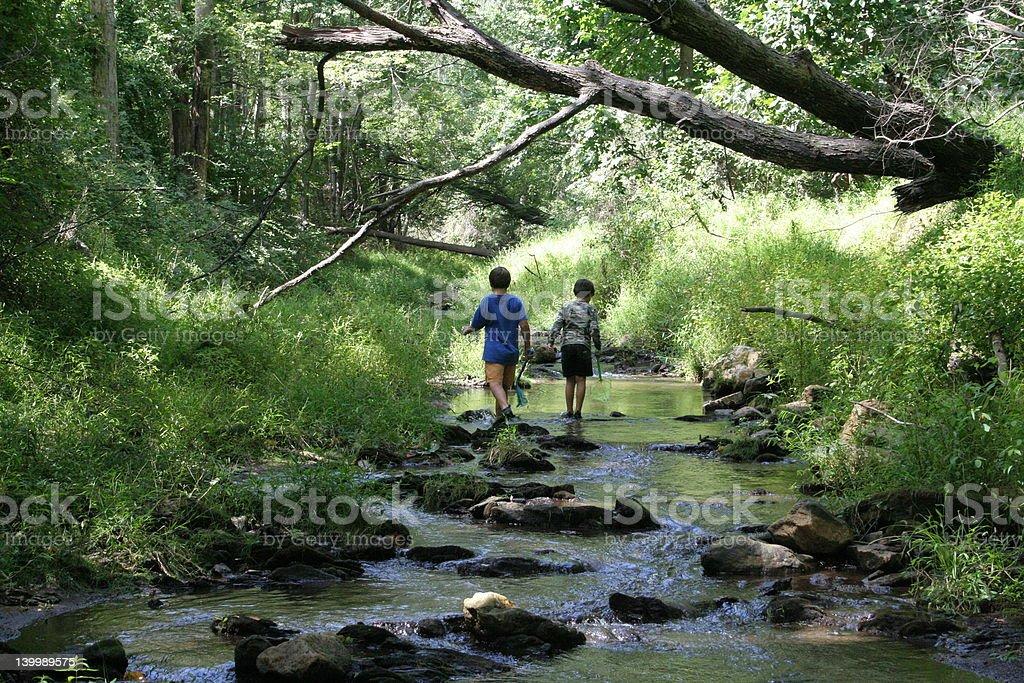 Children exploring a stream royalty-free stock photo