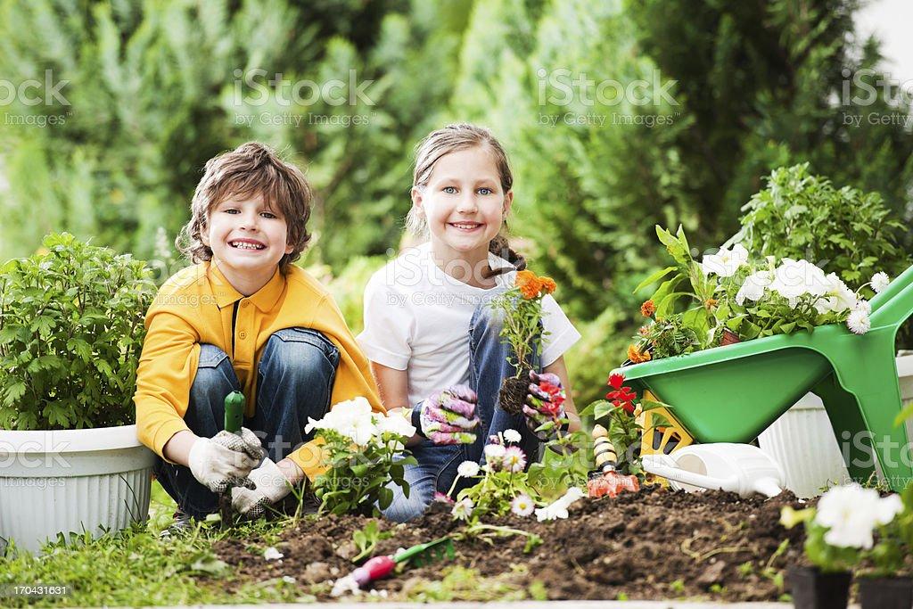 Children gardening. stock photo
