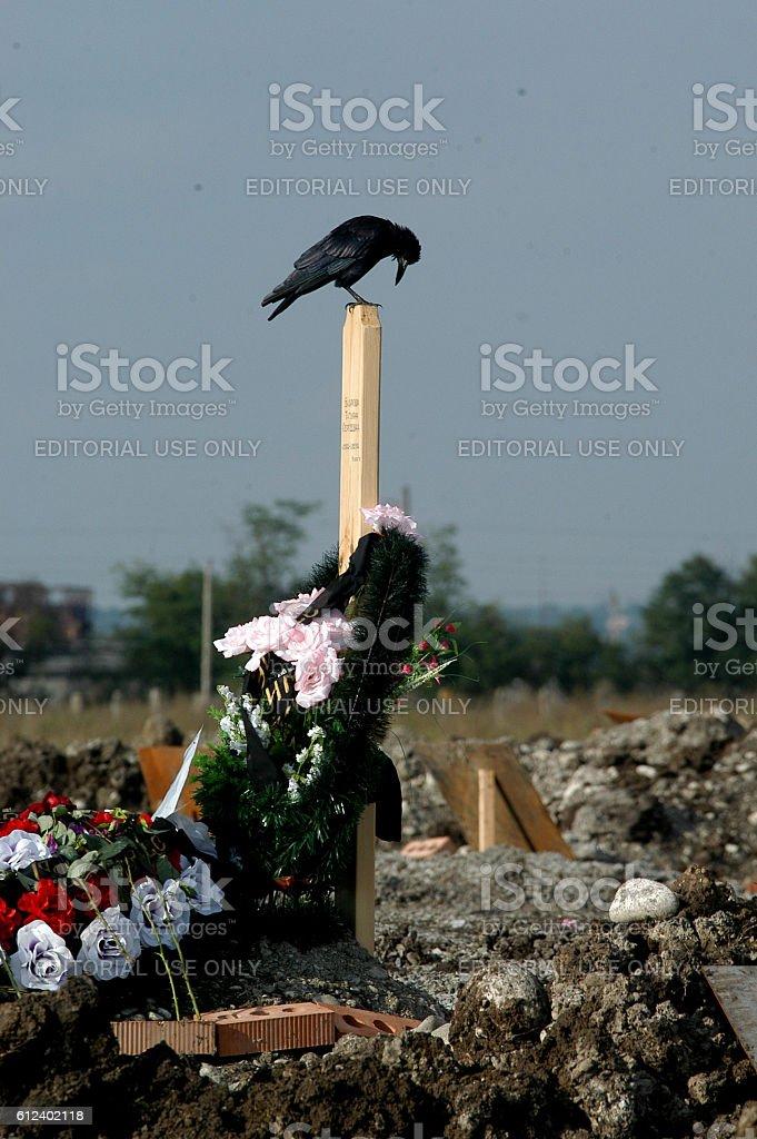 'Children graveyard' of people killed in terrorist attack stock photo