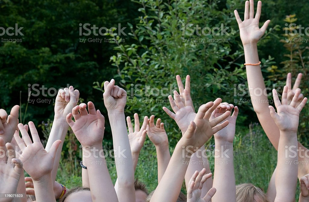 children hands before green forest over head stock photo