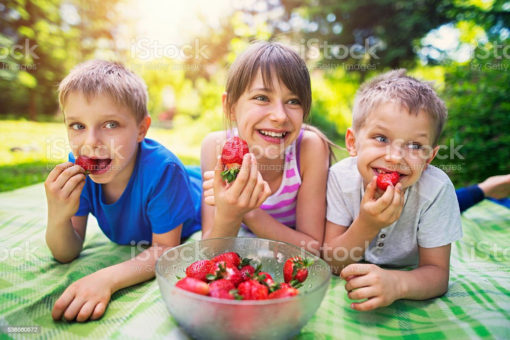 Children having picnic and eating strawberries in garden stock photo