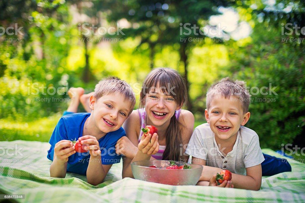 Children having picnic and eating strawberries in garden stock photo