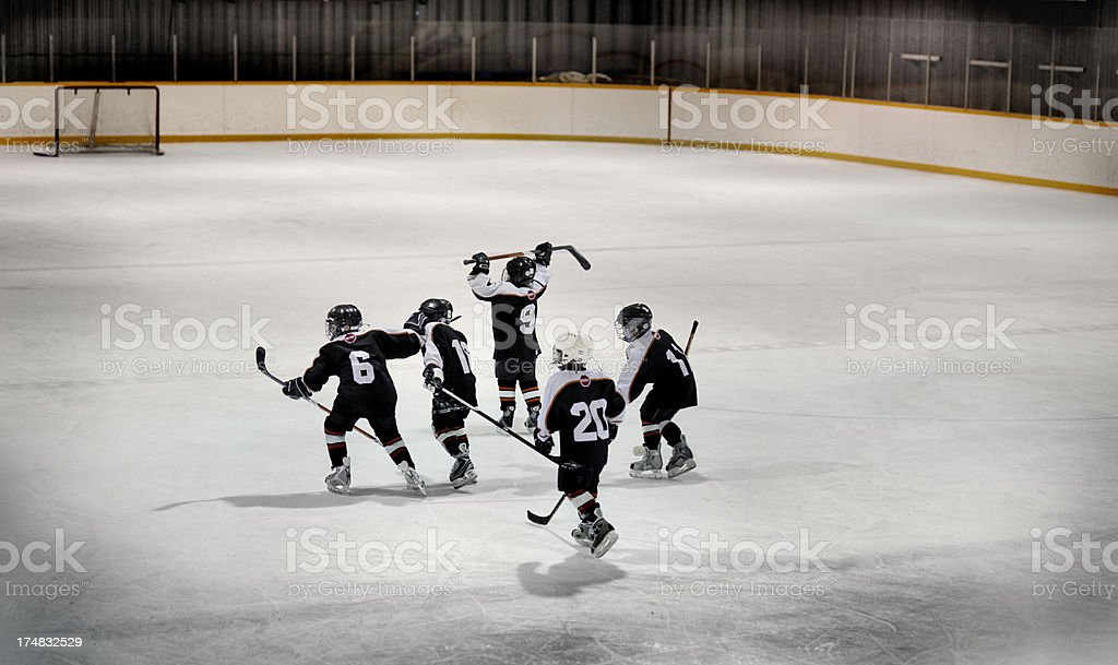 Children Hockey Team on Ice Rink stock photo
