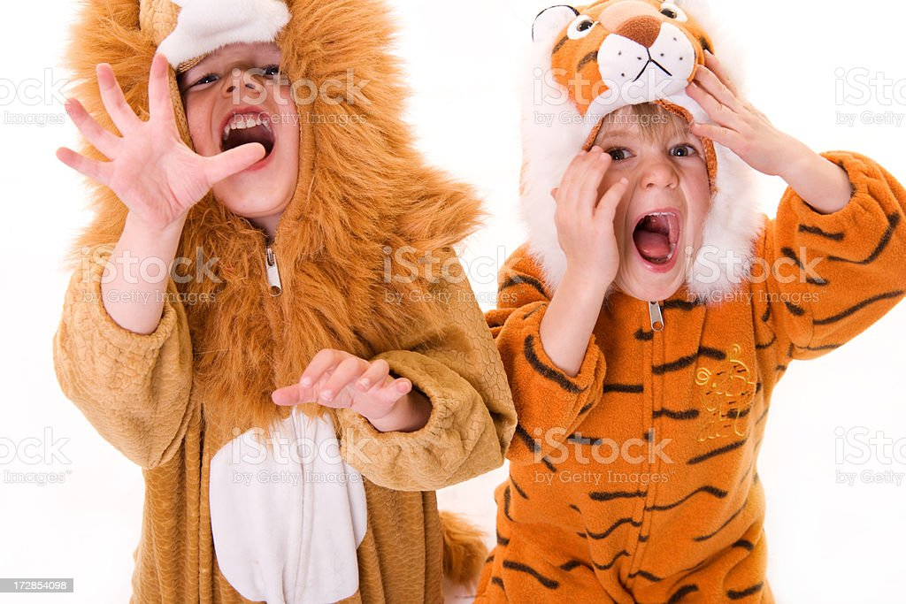Children in a lion and tiger costume stock photo