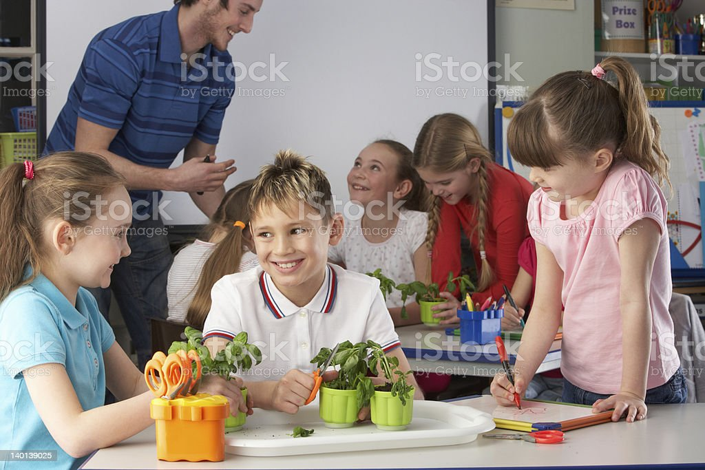 Children learning about plants in school class royalty-free stock photo