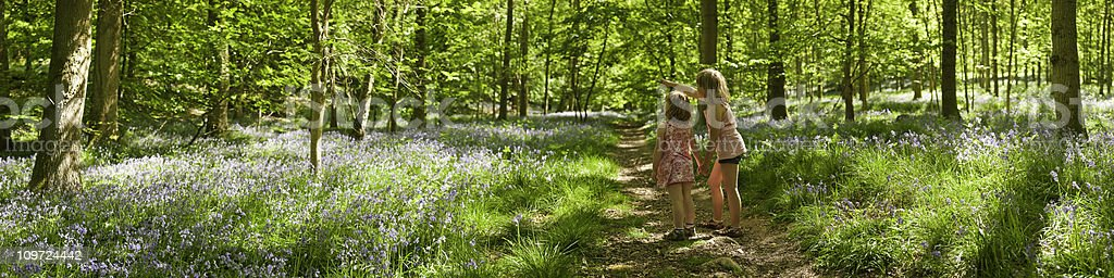 Children looking at nature idyllic summer wilderness forest trail panorama stock photo