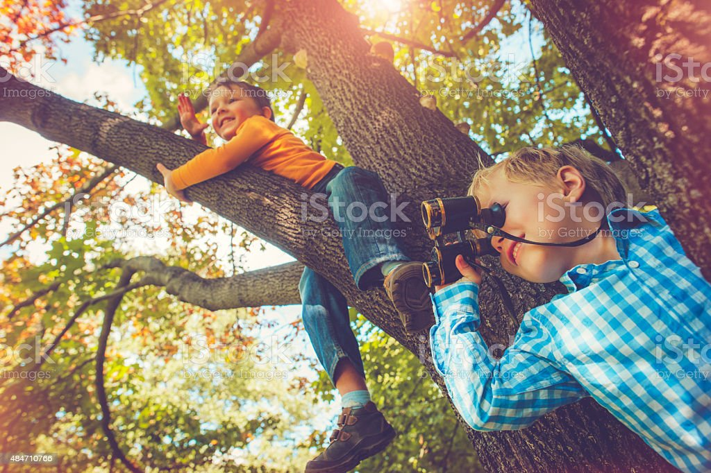 Children on a tree in autumn stock photo
