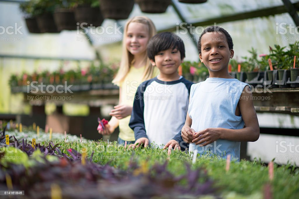 Children Picking Out Plants stock photo