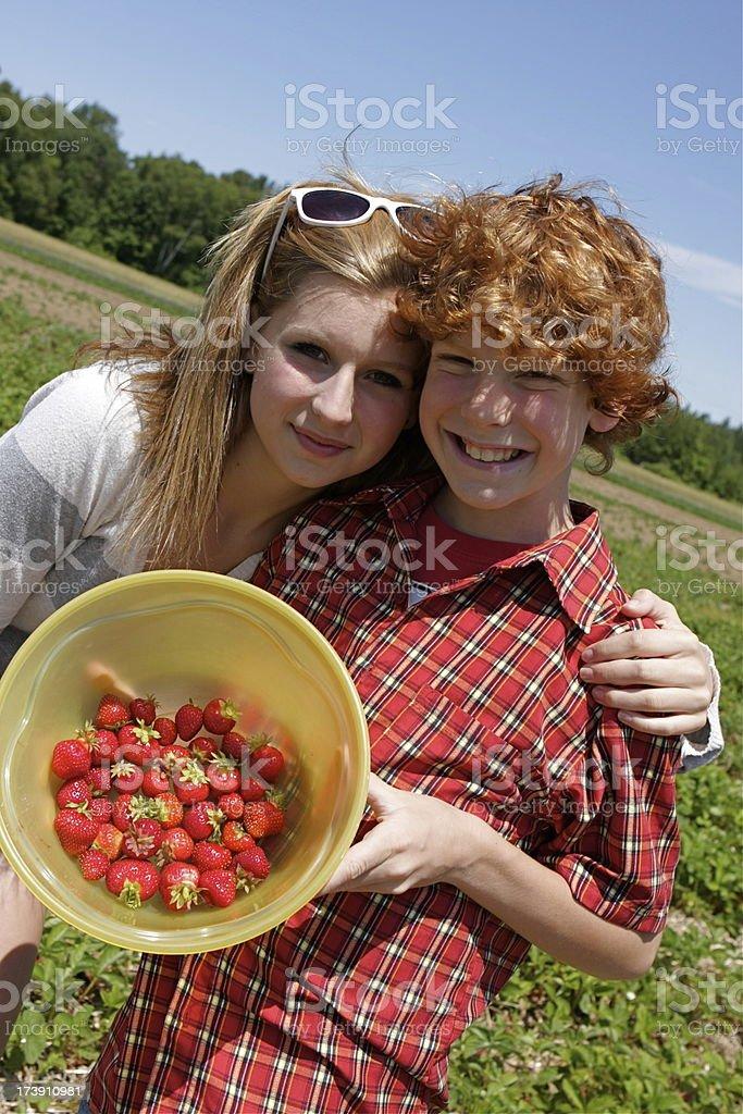 Children Picking Strawberries royalty-free stock photo
