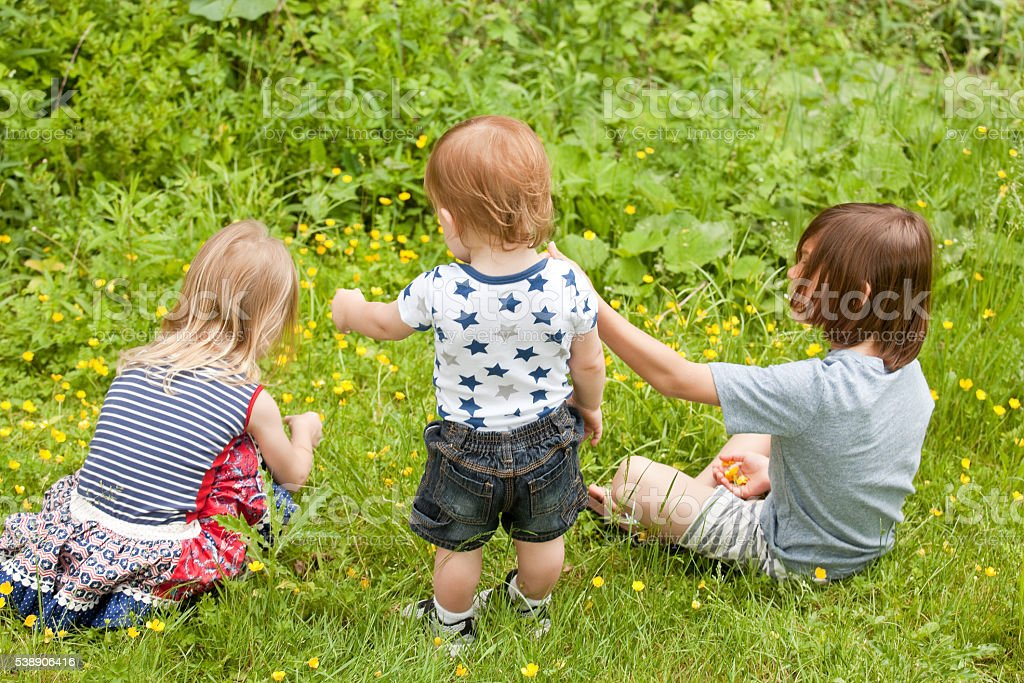 Children Picking Wildflowers stock photo