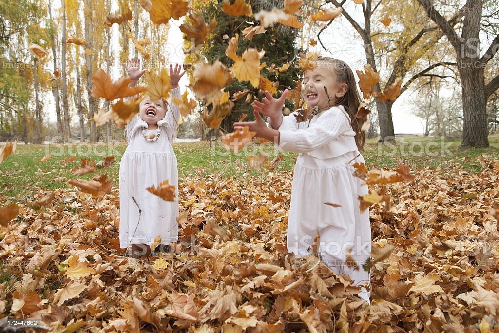 Children Playing in Autumn Leaves royalty-free stock photo